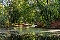 Zeist - park - autumn 2018 (45333772061).jpg