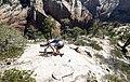 Zion National Park (15141422680).jpg