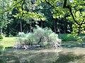Zugdidi botanical garden3.jpg