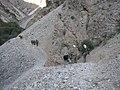 """""""Караван"""" научно-исследовательской геологической экспедиции в горах Киргизии.JPG"""