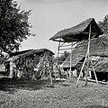 """""""Kozuč?k"""" (manjši kozolec), Slinovce 1956.jpg"""