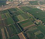 Área de fruticultura irrigada em Petrolina, Pernambuco, Brasil.jpg