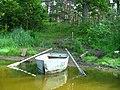 Берег озера Зелененского - panoramio.jpg