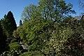 Ботанічний сад Ужгородського державного університету.jpg
