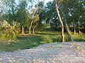 Дикий пляж в-9 - panoramio.jpg
