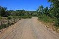 Дорога вдоль берега старицы - panoramio.jpg
