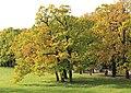 Екатерининский парк в Царском Селе 2H1A2726WIR.jpg