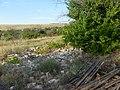 Заброшенный дачный посёлок - panoramio (57).jpg
