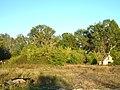 Заброшенный домик на опушке - panoramio.jpg
