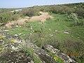 Монастирище. Панорама.jpg