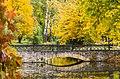 Осінні кольори в дендропарку Олександрія.jpg