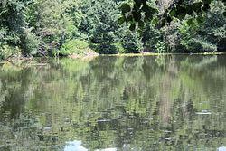 Парк-пам'ятка в Ташані 8.jpg