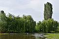 Црна Река.jpg