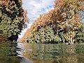 باغ شازده ماهان (3).jpg