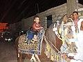 طفل صغير في حفل الزفاف يركب الحصان.jpg