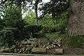ქუთაისის ბოტანიკური ბაღი 05.jpg
