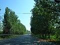 安徽省巢湖市含山县郊区公路 - panoramio.jpg