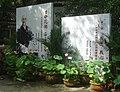 杭州.虎跑(荷花展) - panoramio (2).jpg