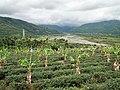 紅葉溪 Hongye River - panoramio.jpg