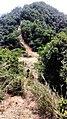 虎门皇帝山20130519 - panoramio (4).jpg
