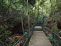 通往涌泉寺的栈道 - Boardwalk to Yongquan Temple - 2014.08 - panoramio.jpg