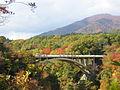 鳴子峡大深沢橋を望む.JPG