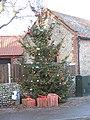 -2019-12-04 Village Christmas Tree, Mundesley (1).JPG