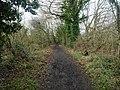 -2021-01-18 West along Weaver's Way footpath, East Ruston, Norfolk (3).jpg