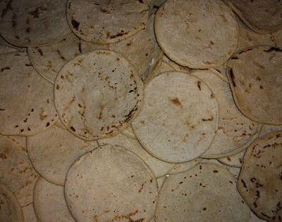 080809 white maize tortillas.JPG
