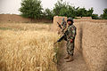 1-7 continues to disrupt Taliban insurgents in Larr Village, Afghanistan 140515-M-OM885-618.jpg