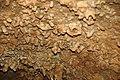 172 Helictites & stalactites 8 (8316550469).jpg