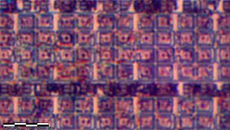 Electron microprobe - For comparison purposes, a similar section of the 1886VE10 microcontroller die as seen by an optical microscope.