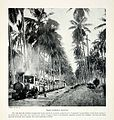 1925 Print Trans-Zambezi Railway Nyasaland Malawi Africa Train Locomotive Jungle - Original Halftone Print.jpg