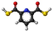Ball-and-stick model of the 2,6-pyridinedicarbothioic acid molecule