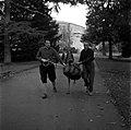 20.11.1961. Animaux au jardin des plantes. (1961) - 53Fi3076.jpg