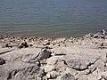 2011年8月14日阿苇滩水库白石头水位情况不好钓鱼 余华峰 - panoramio.jpg