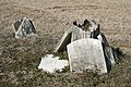 2011-01-30 Forgotten graves in Durham.jpg