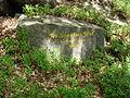 2012 Pfälzerwald 168 Dr Sprater Pfad Ritterstein 185.jpg