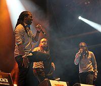 2013-08-23 Chiemsee Reggae Summer - T.O.K. et al. 4176.JPG