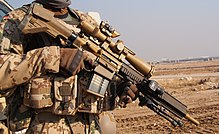 Designated marksman rifle - Wikipedia