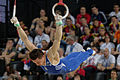 2015 European Artistic Gymnastics Championships - Rings - Eleftherios Petrounias 09.jpg