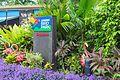 2016 Singapur, Jurong Bird Park (002).jpg