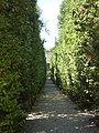 2017-06-20 Giardino di Boboli 47.jpg