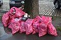 2019-01-01 Müllsammeln zu Neujahr am Maschsee in Hannnover (21).jpg