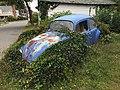 2019-10-02 Overgrown VW bug, Oak Bluffs, Martha's Vineyard.jpg