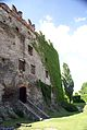 2170viki Zamek Bolków. Foto Barbara Maliszewska.jpg