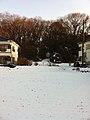 2 Chome Jindaiji Minamimachi, Chōfu-shi, Tōkyō-to 182-0013, Japan - panoramio (3).jpg