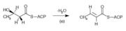 3-hydroxyacyl-ACP dehydrase.png