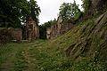 361viki Ruiny zamku Świecie. Foto Barbara Maliszewska.jpg