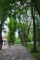 46-106-5002 Drohobych Park RB 18.jpg